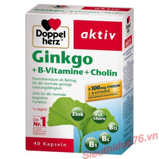 Viên uống bổ não Ginkgo Doppelherz Aktiv + B-Vitamine + Cholin Của Đức
